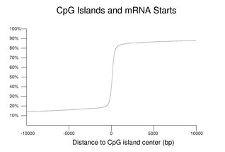 CpG Islands and mRNA Starts